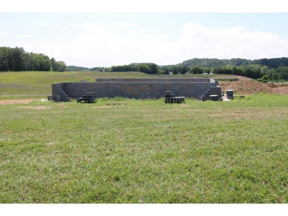 130 Raders Sidetrack Road, Greenevile, TN 37743 (MLS #409840) :: Griffin Home Group