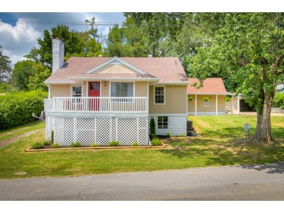 113 Inca Drive, Mount Carmel, TN 37645 (MLS #409874) :: Griffin Home Group