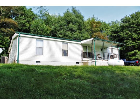 2217 Green Valley Rd, Lebanon, VA 24266 (MLS #409896) :: Conservus Real Estate Group