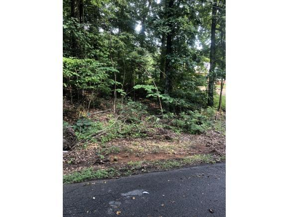 Lot 3 Hutchinson Drive, Kingsport, TN 37660 (MLS #409922) :: Griffin Home Group