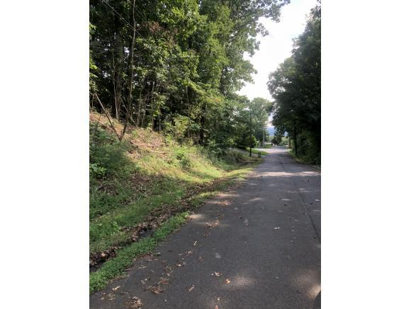 Lot 2 Hutchinson Drive, Kingsport, TN 37660 (MLS #409923) :: Griffin Home Group