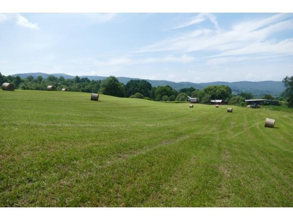 TBD Sluder Road, Shady Valley, TN 37688 (MLS #409947) :: Griffin Home Group