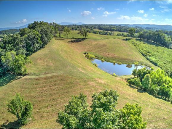 0 Ottway Road, Greeneville, TN 37745 (MLS #409990) :: Conservus Real Estate Group