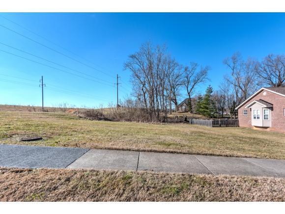 Lot 1 Lee Carter Drive, Johnson City, TN 37601 (MLS #410191) :: Highlands Realty, Inc.
