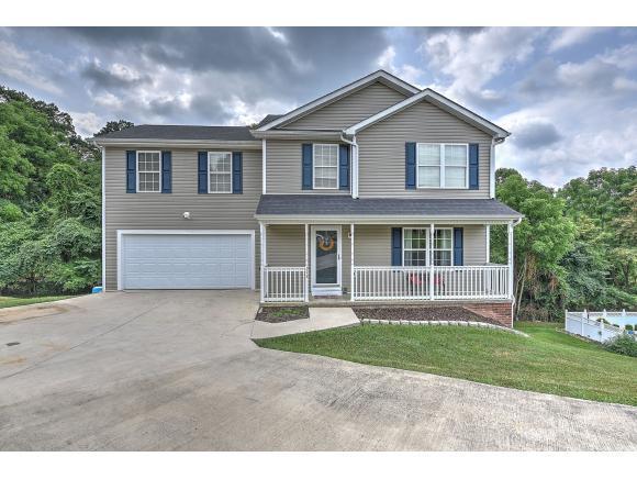 313 Henrys Lane, Bristol, VA 24202 (MLS #410325) :: Conservus Real Estate Group