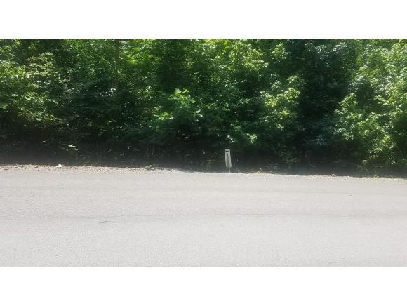 TBD Walnut Bend Drive, Whitesburg, TN 37891 (MLS #410347) :: Highlands Realty, Inc.