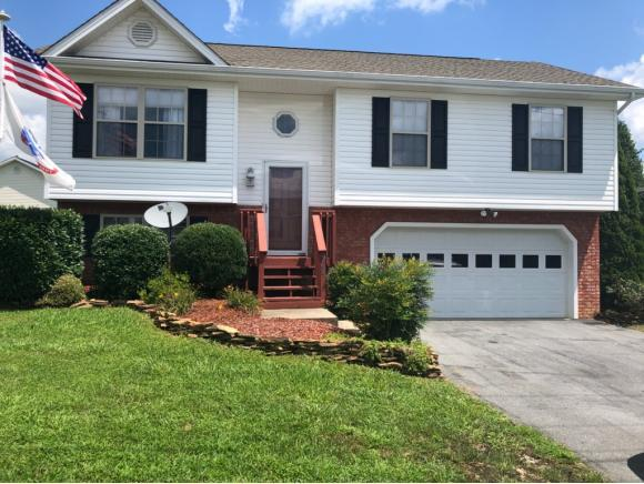 208 New Hope Rd, Jonesborough, TN 37659 (MLS #410867) :: Griffin Home Group