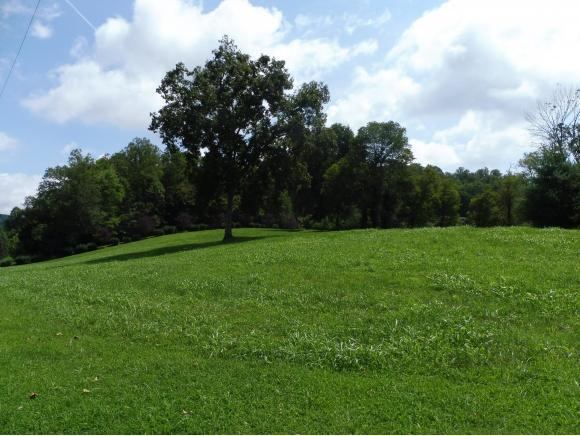 0 Roberts Creek Rd., Hiltons, VA 24258 (MLS #411003) :: Griffin Home Group