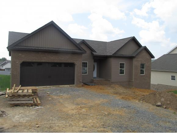 608 Walkers Bend, Gray, TN 37615 (MLS #411248) :: Highlands Realty, Inc.