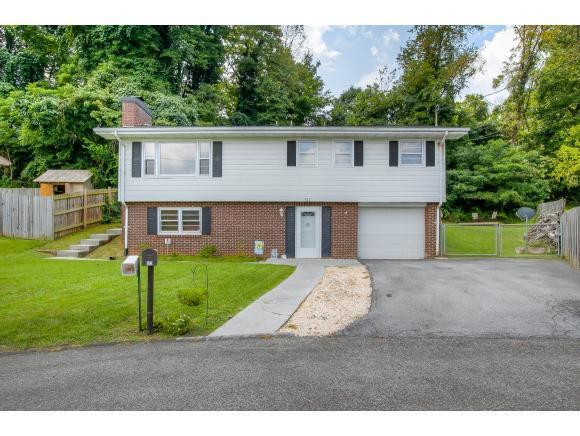 512 Montrose Drive, Bristol, VA 24201 (MLS #411259) :: Griffin Home Group