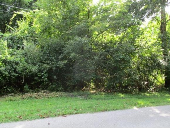 tba Cornelius Drive, Abingdon, VA 24211 (MLS #411269) :: Highlands Realty, Inc.