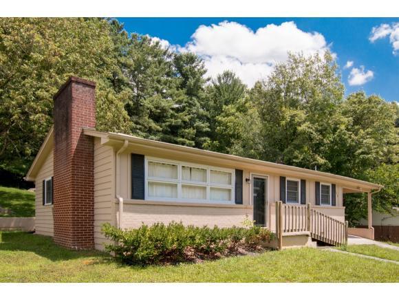129 Sycamore Drive, Bristol, TN 37620 (MLS #411367) :: Highlands Realty, Inc.