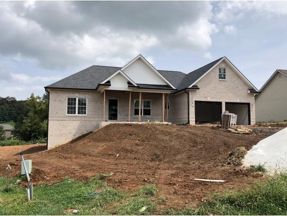 1348 Savin Falls, Gray, TN 37615 (MLS #411510) :: Highlands Realty, Inc.