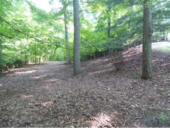 5213 Foxfire Place, Kingsport, TN 37664 (MLS #411740) :: Highlands Realty, Inc.