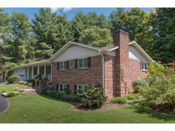 121 Maxwell Drive, Bristol, TN 37620 (MLS #411883) :: Highlands Realty, Inc.