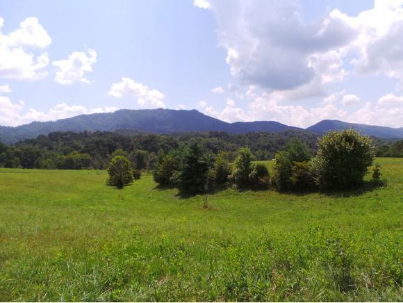 0 Beech Creek Road, Rogersville, TN 37857 (MLS #411907) :: Highlands Realty, Inc.