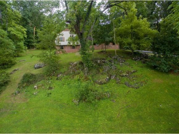 101 Greenwood Lane, Kingsport, TN 37663 (MLS #411961) :: Griffin Home Group