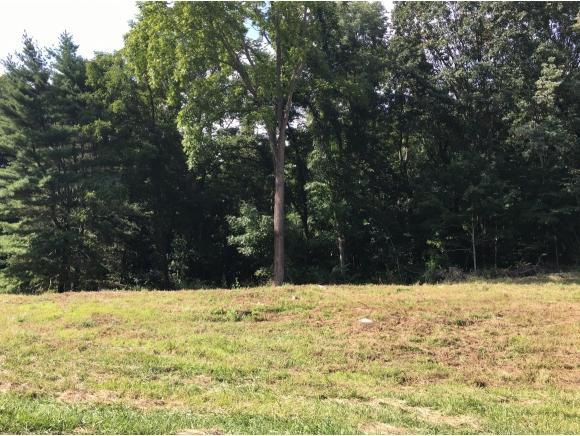 TBD Grove Park Drive, Bristol, TN 37620 (MLS #412290) :: Highlands Realty, Inc.