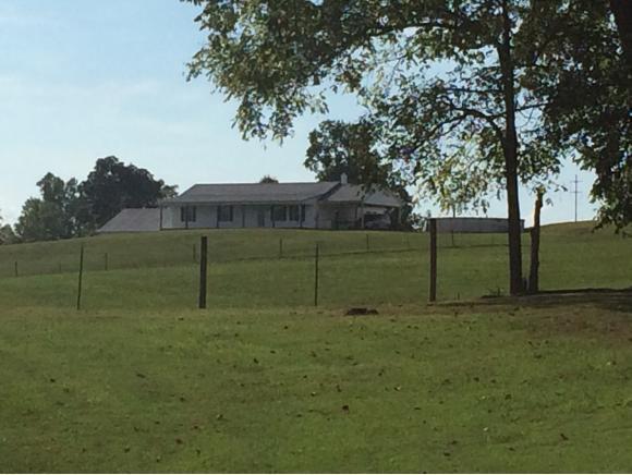 340 Marcella Dr., Greeneville, TN 37774 (MLS #412303) :: Highlands Realty, Inc.