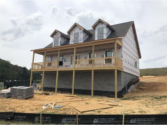 1398 Peaceful Drive, Jonesborough, TN 37659 (MLS #412352) :: Griffin Home Group