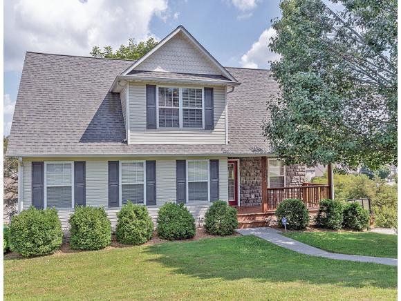 154 Stoneybrook Drive, Abingdon, VA 24210 (MLS #412372) :: Conservus Real Estate Group