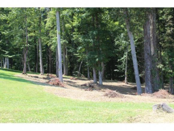 354 Old Stage Rd, Rogersville, TN 37857 (MLS #412387) :: Highlands Realty, Inc.