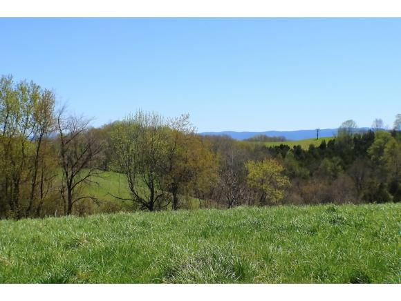 0 Spring Branch Road, Marion, VA 24354 (MLS #412457) :: Highlands Realty, Inc.