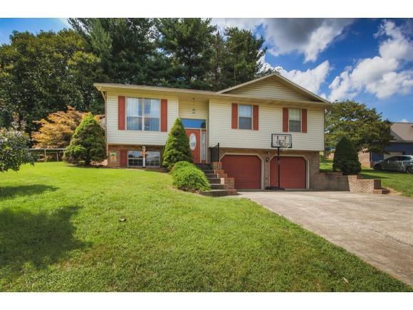 103 Gilda Ave, Church Hill, TN 37642 (MLS #412466) :: Conservus Real Estate Group
