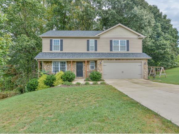 215 Holland View Drive, Jonesborough, TN 37659 (MLS #412593) :: Conservus Real Estate Group