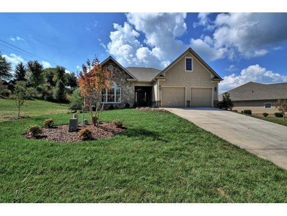 113 Cypress Ridge Ct., Jonesborough, TN 37659 (MLS #412719) :: Conservus Real Estate Group