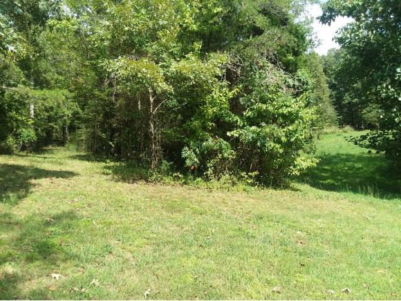 0 Housewright, Church Hill, TN 37642 (MLS #412749) :: Griffin Home Group