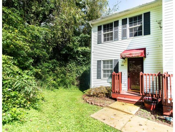 339 Beaverview Dr. #339, Bristol, VA 24201 (MLS #412758) :: Conservus Real Estate Group