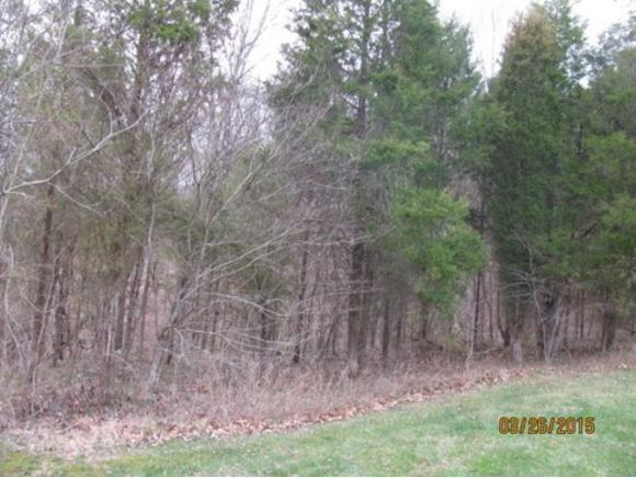 0 Toll Branch Road, Elizabethton, TN 37643 (MLS #412769) :: Griffin Home Group