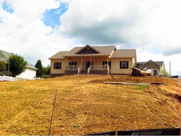 130 Olde Farm Drive, Jonesborough, TN 37659 (MLS #412776) :: Conservus Real Estate Group