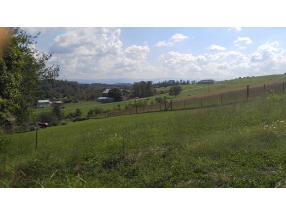 253 Carson Creek Rd, Limestone, TN 37681 (MLS #412778) :: Conservus Real Estate Group