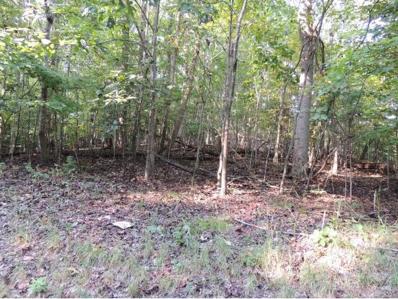 Lot 71 Brooks Pointe Drive, Rogersville, TN 37857 (MLS #412811) :: Griffin Home Group