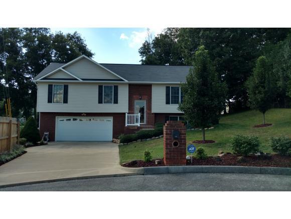 178 Hunters Run Lane, Mount Carmel, TN 37645 (MLS #412831) :: Griffin Home Group