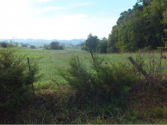 0 Caves Springs Rd, Rogersville, TN 37857 (MLS #412850) :: Griffin Home Group