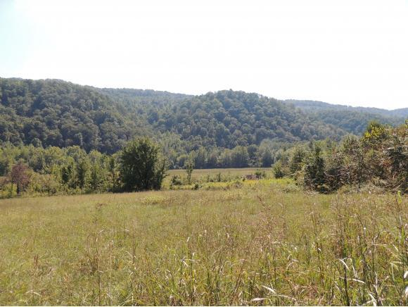 Tract 3 Spruce Pine Road, Rogersville, TN 37857 (MLS #412857) :: Griffin Home Group