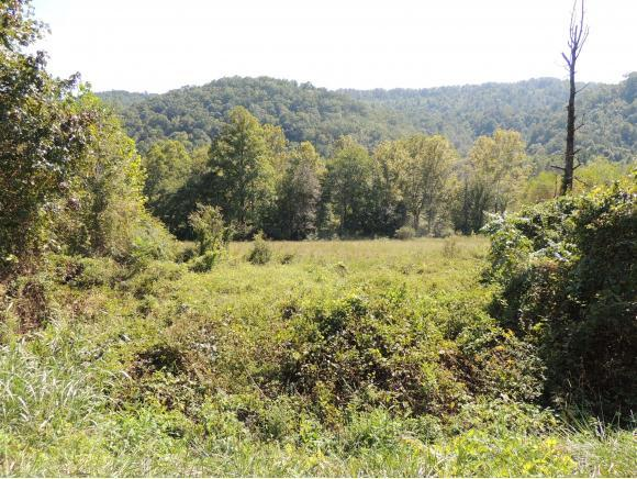 Tract 4 Spruce Pine Road, Rogersville, TN 37857 (MLS #412861) :: Griffin Home Group