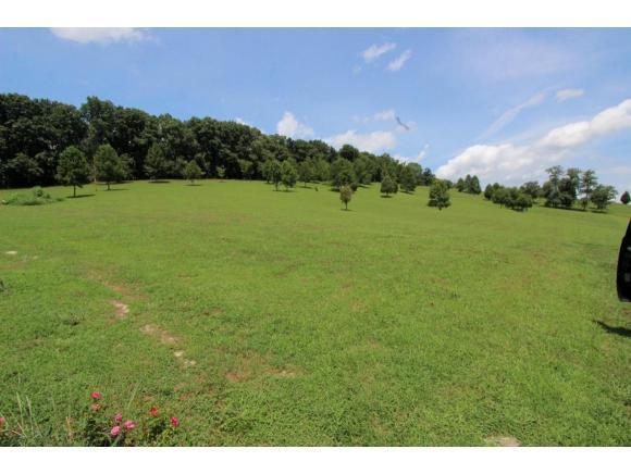 628 A A Deakins, Jonesborough, TN 37659 (MLS #412878) :: Griffin Home Group