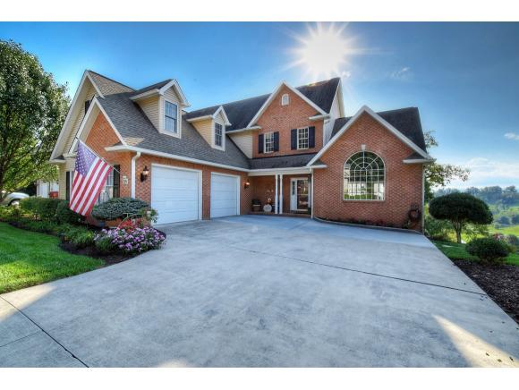 226 Michaels Ridge Blvd, Gray, TN 37615 (MLS #412885) :: Griffin Home Group