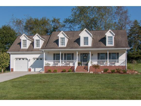 18683 Grahams Drive, Abingdon, VA 24211 (MLS #413113) :: Conservus Real Estate Group