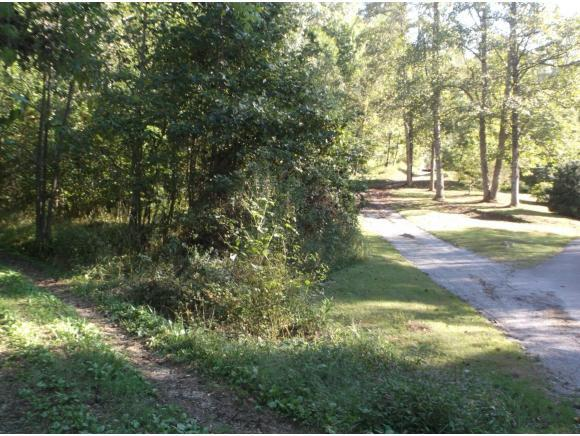 TR1 Guard Banner Road, Erwin, TN 37650 (MLS #413268) :: Griffin Home Group