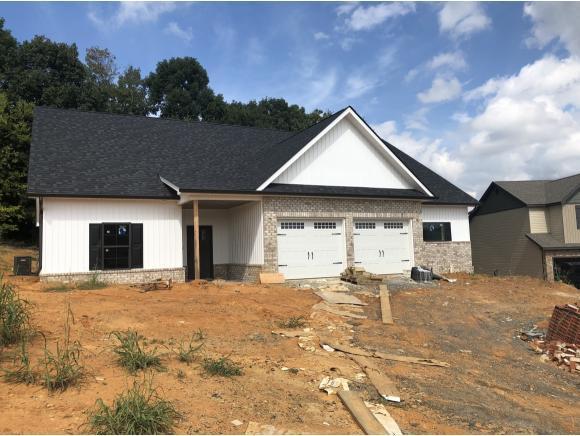 1075 Savin Falls, Gray, TN 37615 (MLS #413336) :: Griffin Home Group