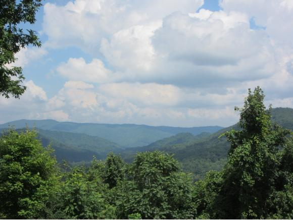 330 Roan Springs Rd, Roan Mountain, TN 37687 (MLS #413386) :: Griffin Home Group