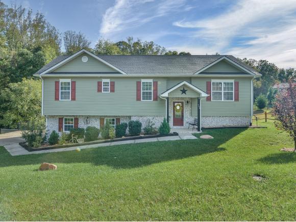 155 Dean Archer Road, Jonesborough, TN 37659 (MLS #413916) :: Highlands Realty, Inc.