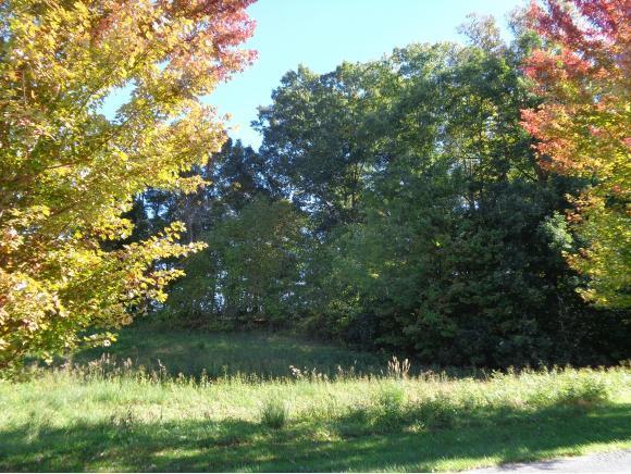 0 Virginiatrail, Bristol, VA 24202 (MLS #414144) :: Highlands Realty, Inc.