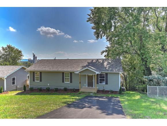 1705 Sevier Terrace Drive, Kingsport, TN 37660 (MLS #414193) :: Conservus Real Estate Group