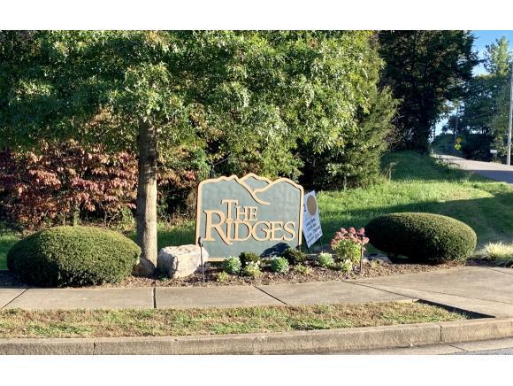 22 Quail Ridge Way, Jonesborough, TN 37659 (MLS #414306) :: Griffin Home Group